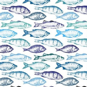 Fish Sketches in Blue Shades // Small