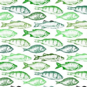 Fish Sketches in Green Shades // Small