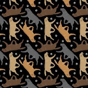 Trotting Labrador Retrievers and paw prints - black