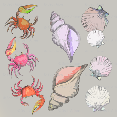 FIDDLER CRABS AND SEASHELLS ON GRAY