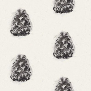 Pinecone in Charcoal