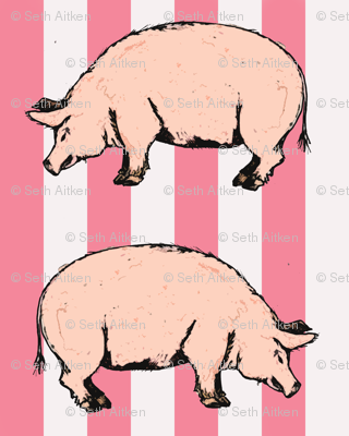 Pink Pigs