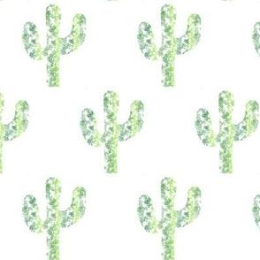 Prickly Fun