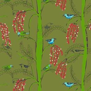 dacnis 1   [cactus]