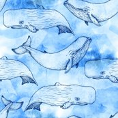 Watercolor_whales_updated_shop_thumb