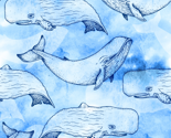 Rrwatercolor_whales_thumb