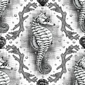 Seahorse Damask - Black & White