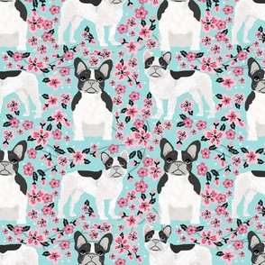 French Bulldog black and white coat cherry blossom fabricblue