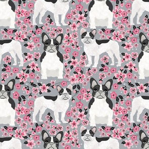 French Bulldog black and white coat cherry blossom fabricgrey