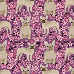 French Bulldog fawn coat cherry blossom fabric purple