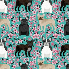 French Bulldog fawn coat cherry blossom fabric turquoise