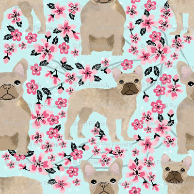 French Bulldog fawn coat cherry blossom fabric
