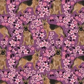 German Shepherd spring fabric cherry blossom
