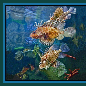 Lionfish Under the Sea