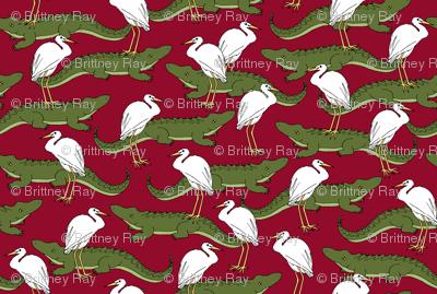 Alligators and Egrets