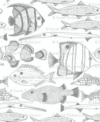 Fish Graphite