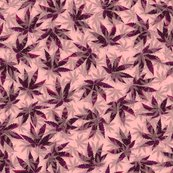 Rpurpleindicadream_4spf_shop_thumb