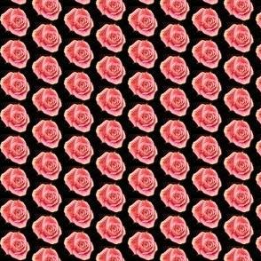 Pussyhat Rose