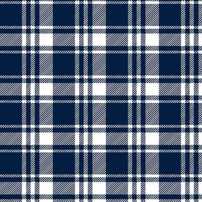 (custom scale) navy and white plaid