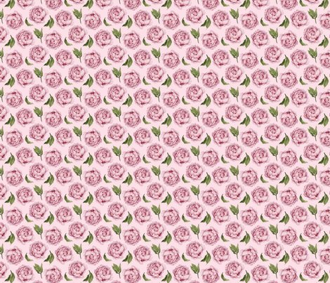 Rrpinkpeony_pinkbackground_shop_preview