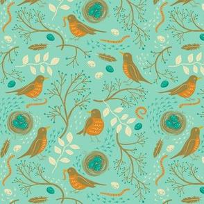 Nesting_Robin