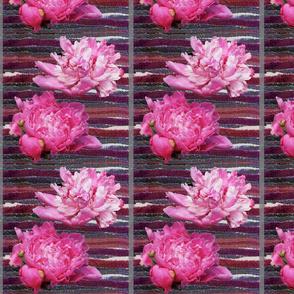 pinkpeonies_on_stripe_background