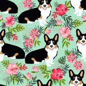 Rcorgi_tri_hawaii_mint_shop_thumb