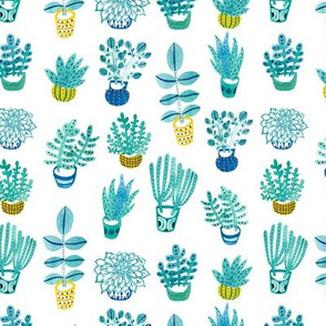 Watercolor Succulent Plants in White