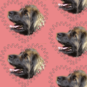 Leonberger Pawprint Hearts