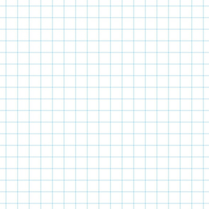 "ice blue windowpane grid 1"" square check graph paper"