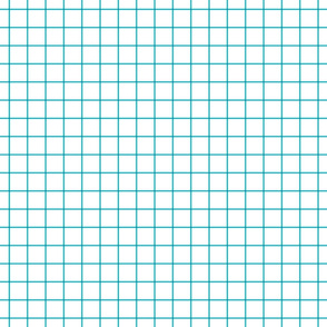 surfer blue windowpane grid 1""