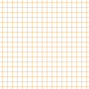 "mango windowpane grid 1"" square check graph paper"
