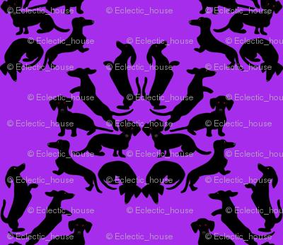 Custom Doxie Damask Black on Purple