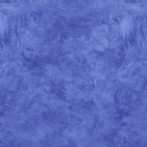 Blue Ragwash