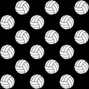 One Inch Black and White Volleyballs on Black