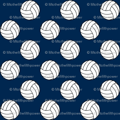 One Inch Black and White Volleyballs on Navy Blue