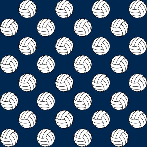 Rrnavy_blue_002750_volleyball_shop_preview