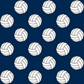 Rrnavy_blue_002750_volleyball_shop_thumb