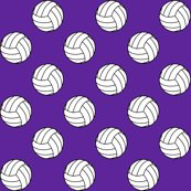 Rrblack_purple_5e259b_volleyball_shop_thumb