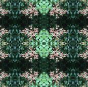 Crepe_Myrtle_Budding_Pattern