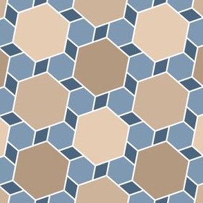 06172554 : hexes 2to1 x3 : natural stone