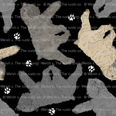 Trotting Bouvier des Flandres and paw prints B - tiny black