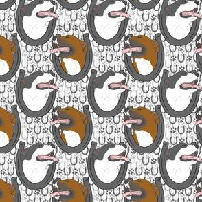 American Pit Bull Terrier horseshoe portraits
