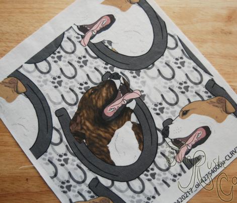 American Pit Bull Terrier horseshoe portraits B