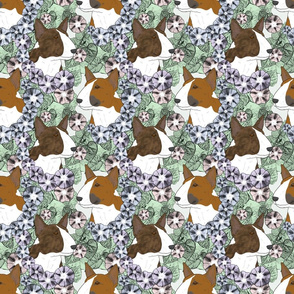 Floral Miniature colored Bull Terrier portraits