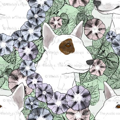 Floral Miniature white Bull Terrier portraits