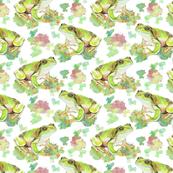 Green Tree Frog, Splashes