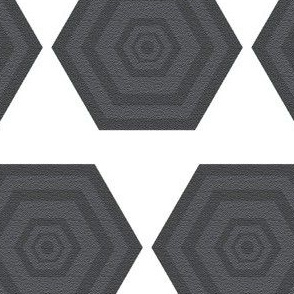 Gray Hexagons on White