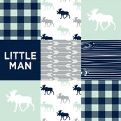 Rbaby_bear__little_man_quilt_tops_northern_lights_colors-05_shop_thumb