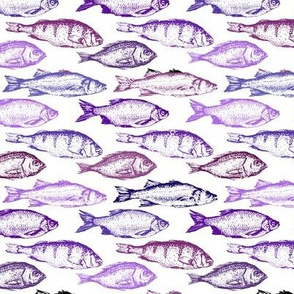 Fish Sketches in Purple Shades // Small